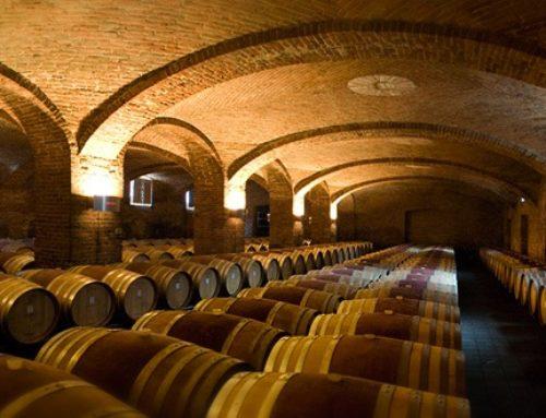 L'utilizzo della barrique nella produzione del vino bianco